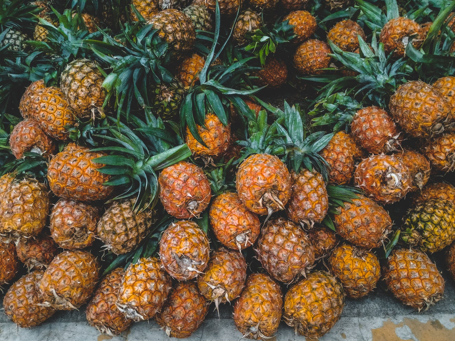 yellow pineapples on focus photography